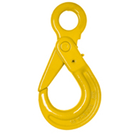 LIFTING EYE SELF LOCKING HOOK